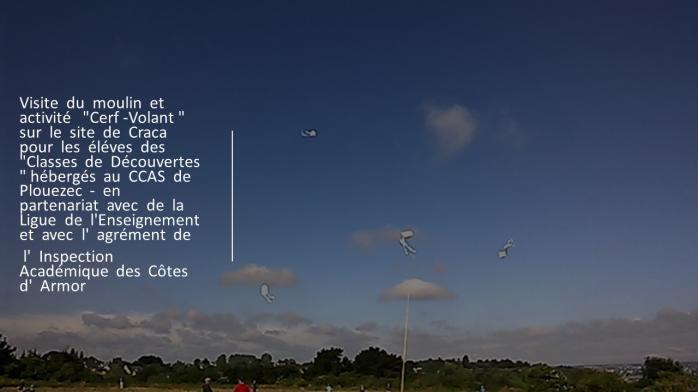 Milin kraka cerfs volants 1